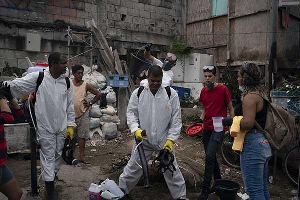Вспышка Болезни В Бразилии