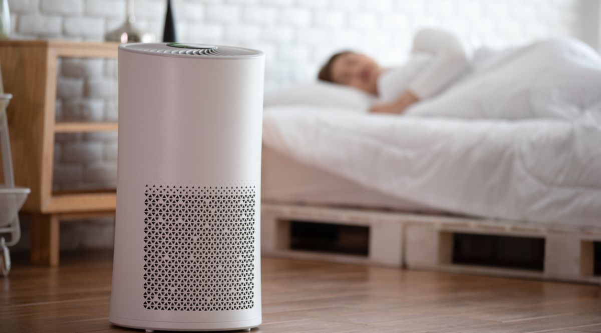 The 5 Best Air Purifiers of 2020 | Infoplease